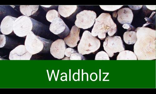 proNARO - Ihr Ansprechpartner für Waldholz